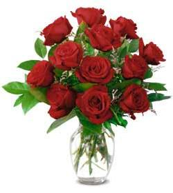 bouquet-of-red-roses-clip-art-ors14xem